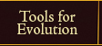 Tools for Evolution The Jewelry Factory